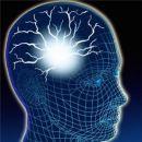 Десять лет до готовности искусственного мозга