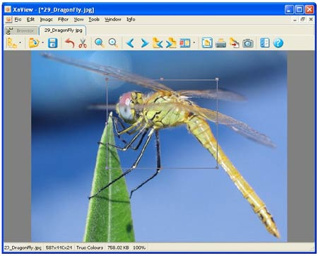 XnView 1.97 Beta 3 - ������� ��������� ACDSee