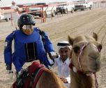 Роботы-жокеи на верблюжьих скачках