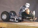 Робот-спасатель BEAR