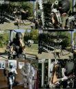 Экзоскелет из Crysis в армии США