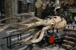 Les Machines de l'ile de Nantes � ���������� ��������