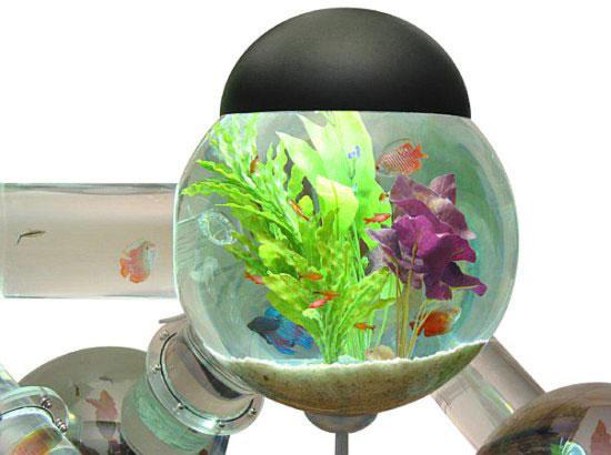 Необычный модульный аквариум