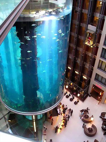 Полет дизайнерской мысли: аквариумная экспансия