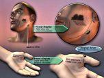 Программируемая татуировка будущего