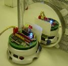 Робот узнающий себя в зеркале