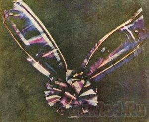 150 лет назад появилась на свет первое цветное фото