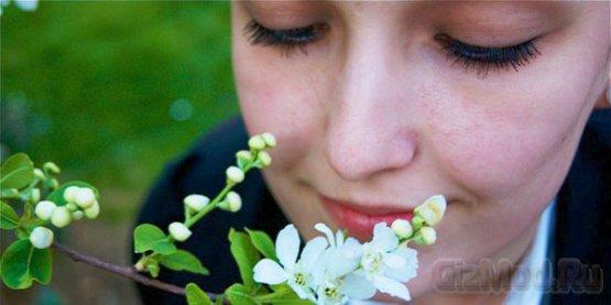 Smell-o-Vision - передача запахов