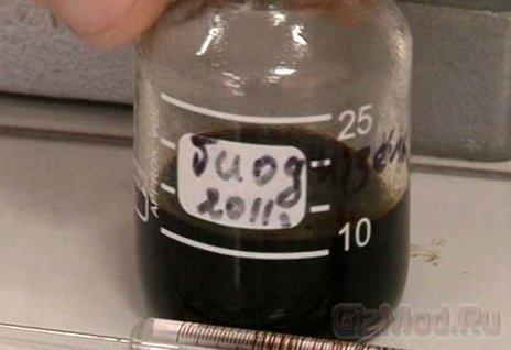 Биодизель из канализации