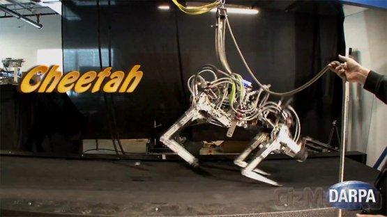 Cheetah - самый быстрый робот в мире