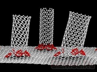 Ученые соединили графен с нанотрубками