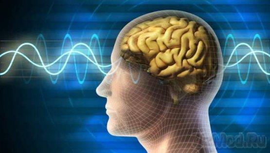 Ученые доказали положительное влияние игр на работу мозга