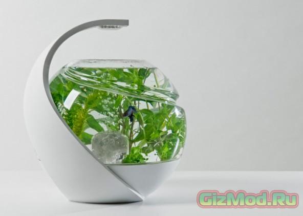 Самоочищающийся аквариум Avo