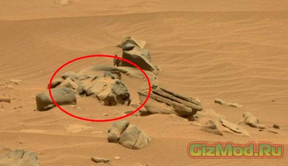 Игра воображения: марсианский камень в форме кошки