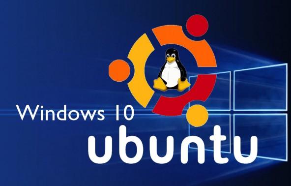 Linux � Windows ������ ������