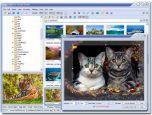 FastStone Image Viewer 3.7 - смотрелка картинок