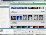 Picasa v.3.1 Build 71.28 - мощный редактор фотографий