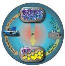 Перезаряжаемый водородный топливный элемент