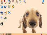 Puppy Linux 1.0.8 – операционная система