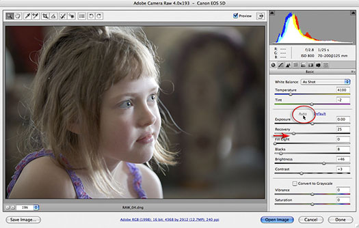 Photoshop CS3 - How to open RAW files?