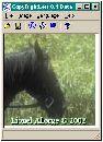 CopyRightLeft 0.4 Beta - копирайт на изображения