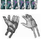 Хирурги смогут воссоздавать пациентов в 3D