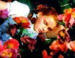 Спать полезнее не видя снов