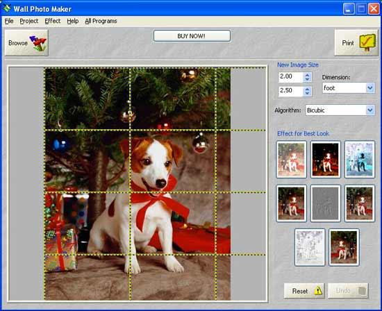 Программу для печать фотообоев