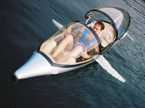 Лодка-дельфин