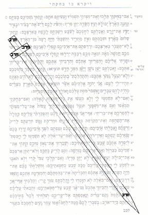 Израильский ученый ищет изображения в Библии