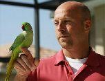 Ожереловый попугай стал звездой Интернета