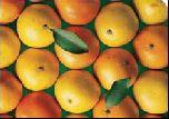 Испанцы будут ездить на апельсиновом топливе