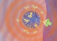 Наночастицы выжигают опухоль