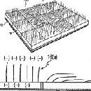 Philips изобрела меховой телевизор