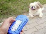 Цифровой тренер для собак