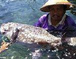 Рыбак поймал динозавра