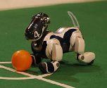 AIBO: футбольные матчи на ВВЦ