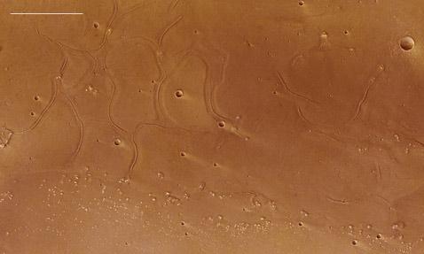 На Марсе открыт странный эстуарий