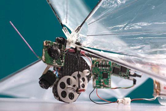 DelFly II – летающий микро-шпион