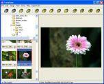 Fresh View 7.34 - бесплатный просмотрщик