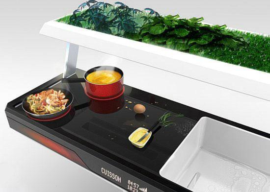 Aion – концептуальная кухня с использованием растений