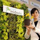 Японцы создали пластиковую землю