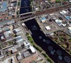 Гигантские 'солнечные' лилии появятся в Глазго