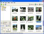 JAlbum v.8.0 - цифровой фотоальбом