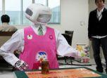 Домашний робот-помощник Mahru