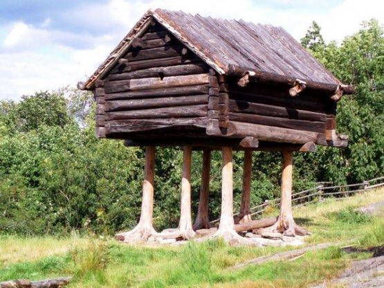 В «Сколково» разработана инновационная станция лесника