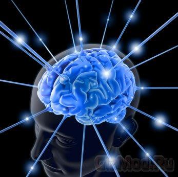 Мозг подростков способен предсказывать хиты
