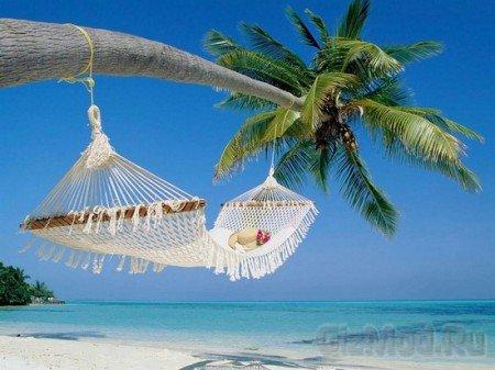 Спланировать отпуск можно в Интернете
