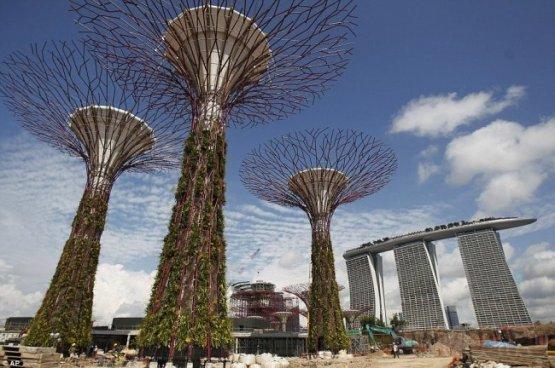 """Гигантские искусственные деревья """"садят"""" в Сингапуре"""
