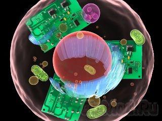 Транзисторная жизнь